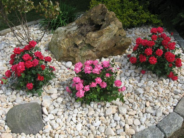 Decorative landscape design for Garden design with roses