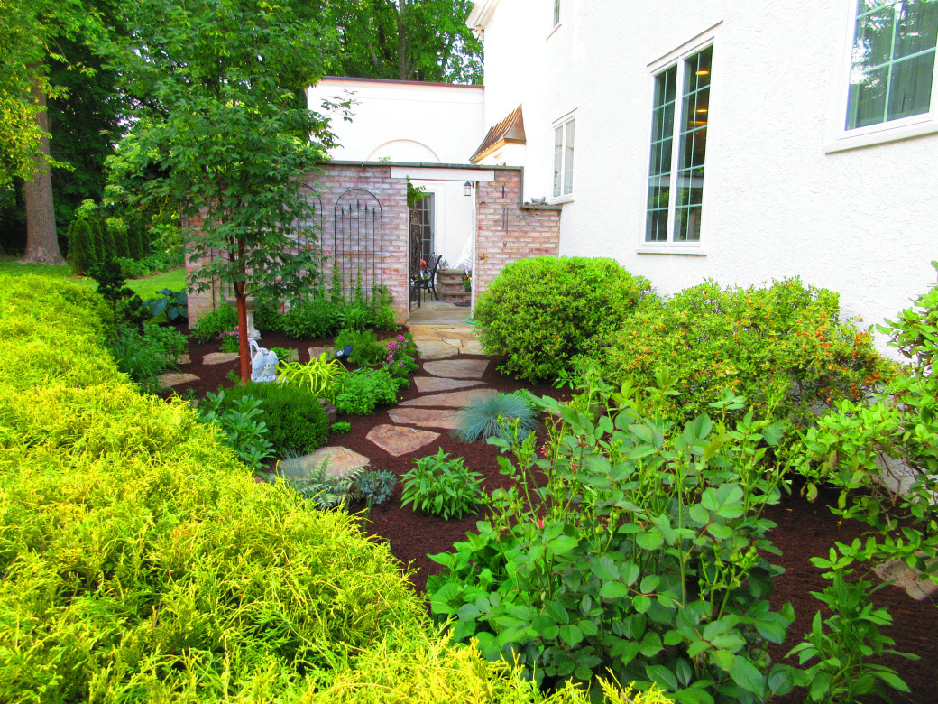 Decorative landscape design for Home landscape design landscaping plants