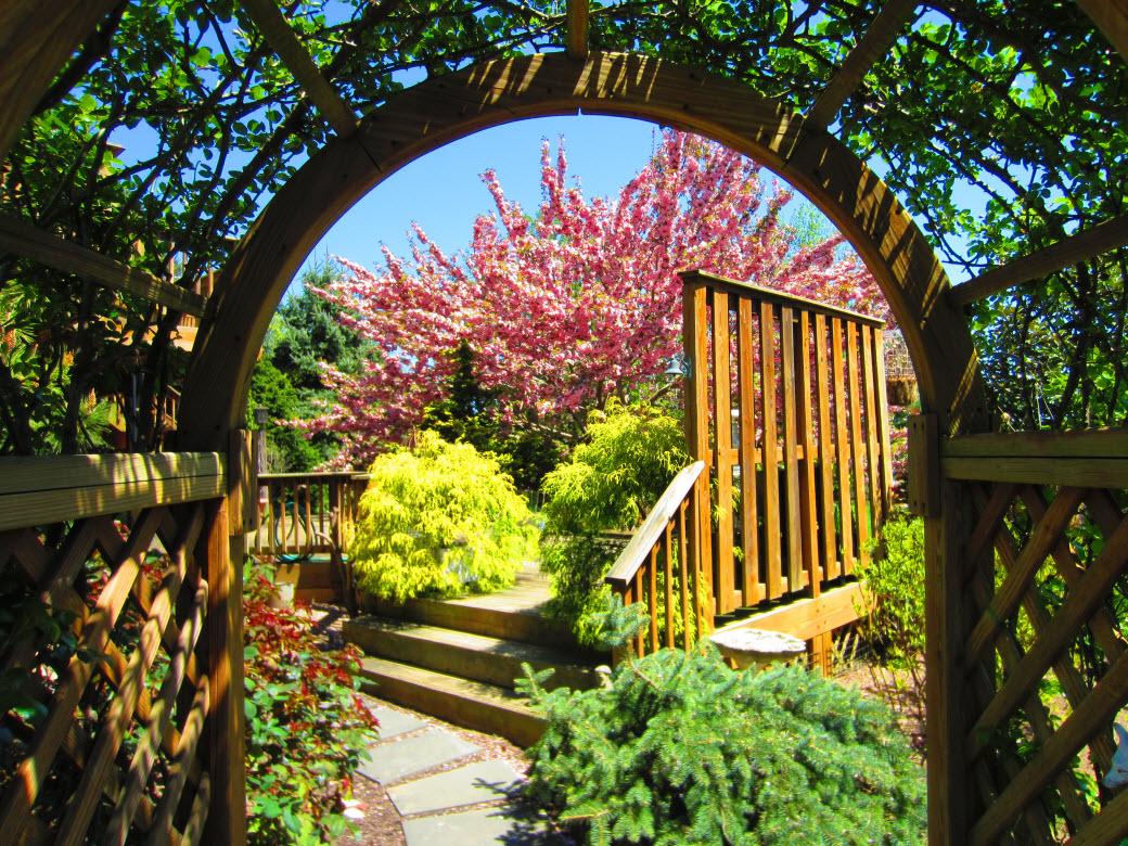 Decorative landscape design for Ornamental garden design